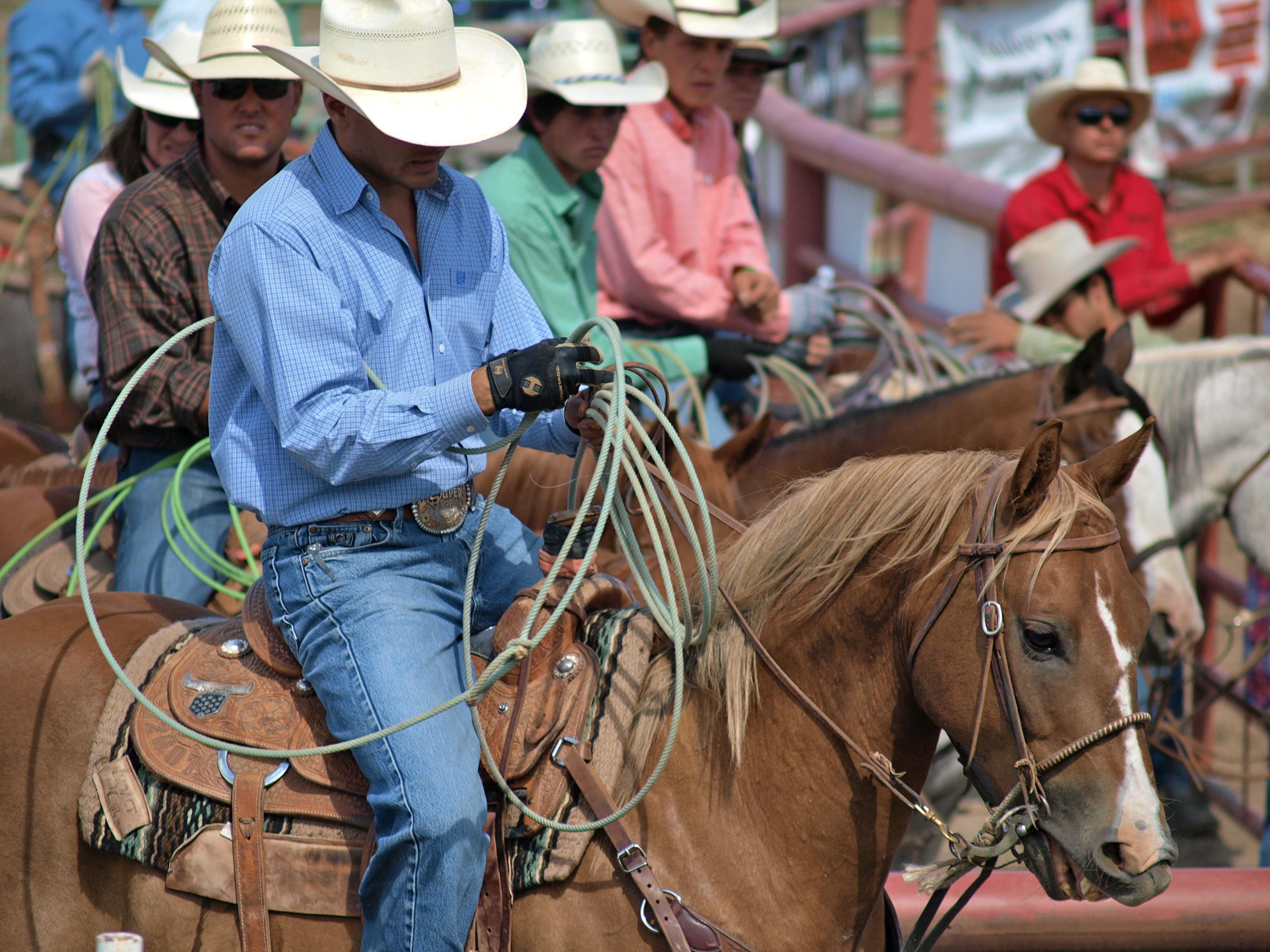 Real cowboys real cowhorses