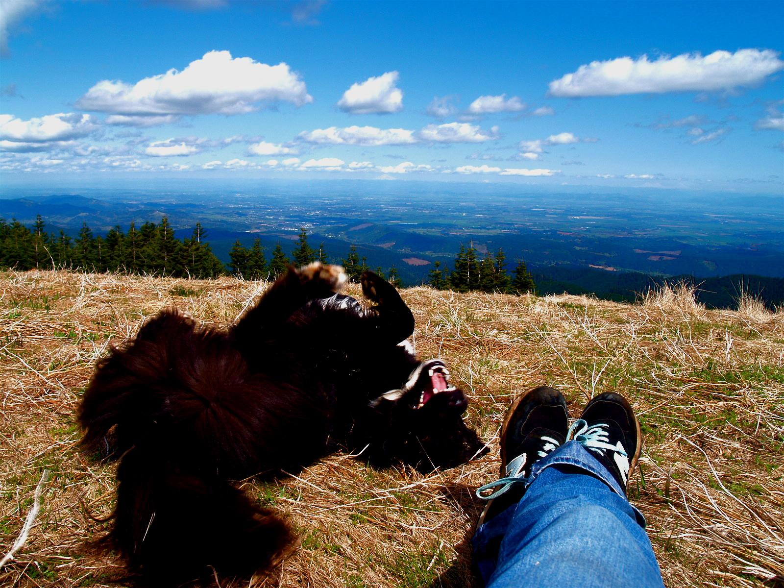 Best Oregon Dog Hikes