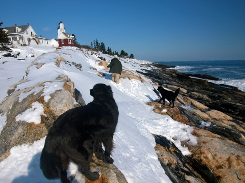 Snowy Pemaquid Point