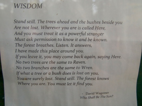 This lovely poem was posted at a trailhead in Ripton, Vermont