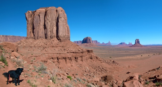 Return to Monument Valley, two years later. Dio didn't show any inclination to return to his wild ways.