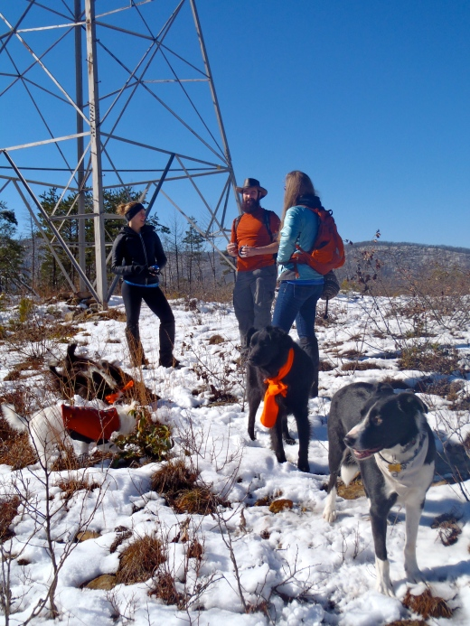 Group photo -- 3 people, 4 dogs -- at the powerlines overlook.