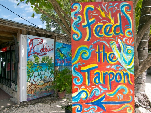 Feed the Tarpon at Robbies!