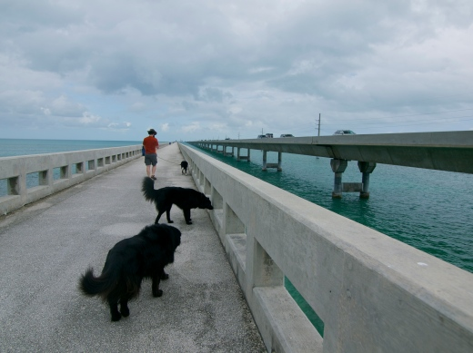 7-Mile Bridge Walk