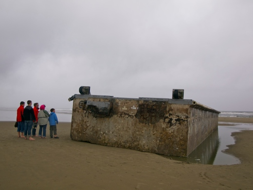 The dock became an instant tourist attraction. It was dismantled in early August.