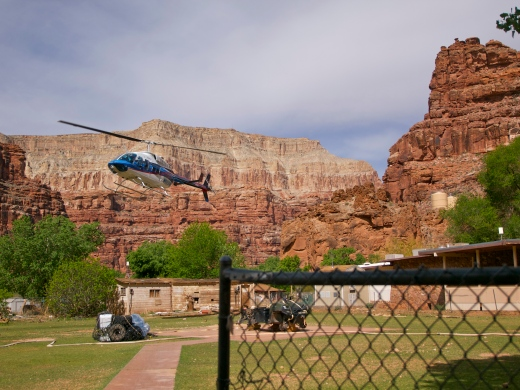 The Bird landing in Supai