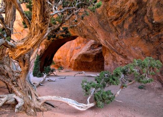 Navajo Arch, Devil's Garden. Utah