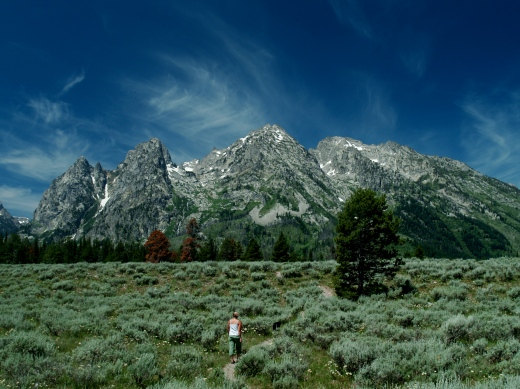 Into the Tetons