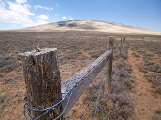Following the BLM fenceline towards the Dome. Notice the tiny vertebrae on the post.