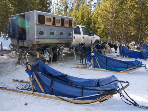 Husky Chariots: Dog truck and sleds