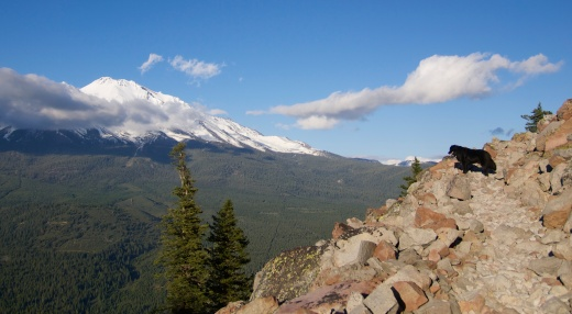 Mount Shasta from Black Butte