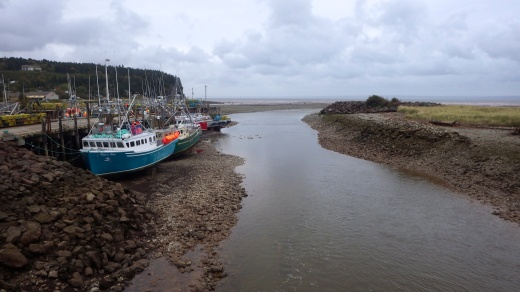 Bay of Funday, Alma Harbor at low tide