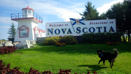 Nova Scotia D.O.G.